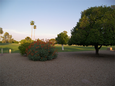 Rio Verde, Arizona real estate