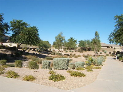 Desert Hills, Arizona real estate